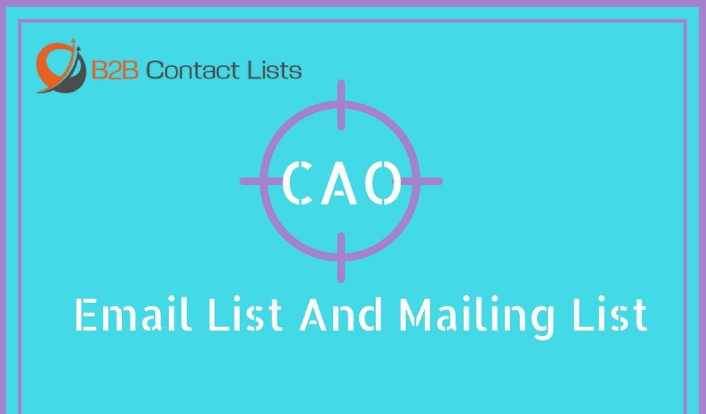 Chief Accounting Officer (CAO) Email List